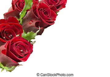Greeting card with a bouquet of roses