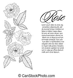 Greeting card with rose, ink sketch - Greeting card with...