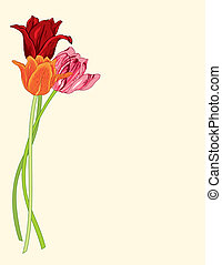 Greeting card with tulips