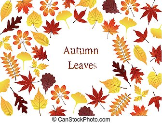 Greeting card with various colorful autumn leaves