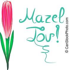 Greeting inscription Mazel Tov translated from Hebrew I wish...