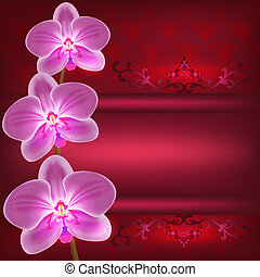 Greeting or invitation card with orchid flower, vector