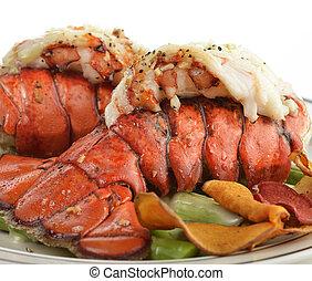 grelhados, espargos, rabo, lagosta