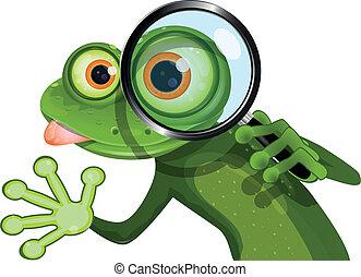 grenouille, et, loupe
