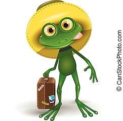 grenouille, valise