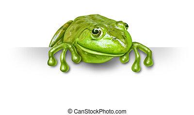 grenouille verte, à, a, signe blanc