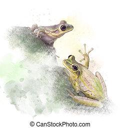 grenouilles, aquarelle, blanc, arbre, fond