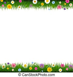 grens, bloemen, gras