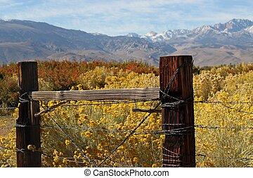 grenzen, sierra, ranch, östlich