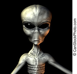 Grey Alien - An example of an alien grey.