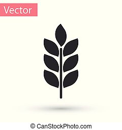 Grey Cereals icon set with rice, wheat, corn, oats, rye, barley sign isolated on white background. Ears of wheat bread symbols. Agriculture wheat symbol. Vector Illustration
