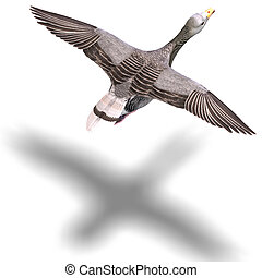 grey goose in flight. 3D rendering with clipping path and...