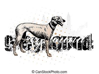 grey  hound - sketching of the grey hound