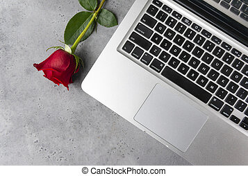grey laptop keyboard, 1 red rose flower on grey background,