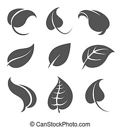Grey leaves silhouettes on white background
