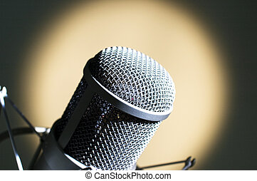 Grey microphone.