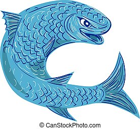 Drawing sketch style illustration of a mullet or grey mullet from a family Mugilidae in the order of ray-finned fish, jumping viewed from the side set on isolated white background.
