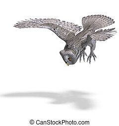 Grey Owl Bird. 3D rendering with clipping path and shadow over white