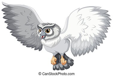 Grey owl with open wings on white background