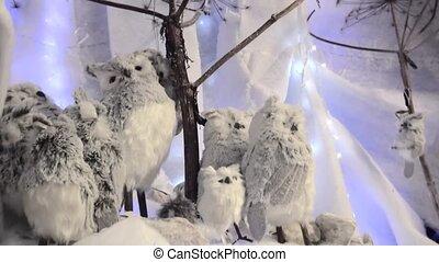 Grey owls in white background