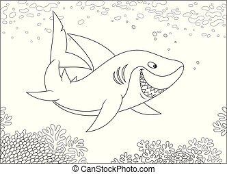 Grey reef shark over a reef