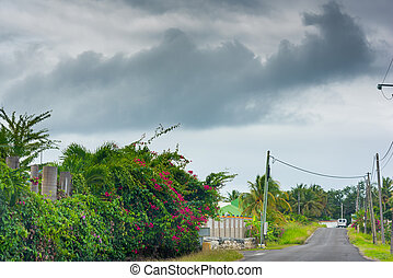 Grey sky over a country road in Guadeloupe