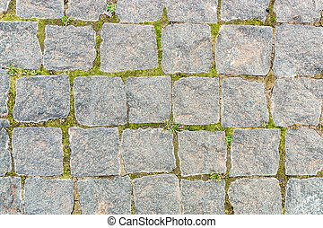 grey stone background from old square paver bricks and green grass between them for designs