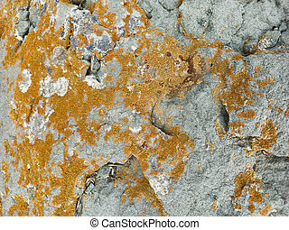 grey stone wall texture with cracks background