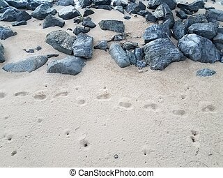 grey stones or rocks with footprints in dry sand
