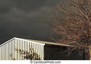 grey tin shed #2