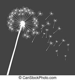 Grey vector dandelion