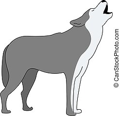 Grey wolf, illustration, vector on white background.