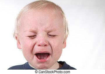 grida, piccolo ragazzo, con, pianto, flusso continuo, giù,...