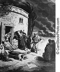 Grief of Job - 1) Le Sainte Bible: Traduction nouvelle selon...