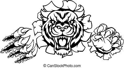griffes, fâché, tigre, fond, percée, mascotte