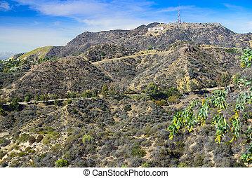 griffith, 公園, 中に, ロサンゼルス