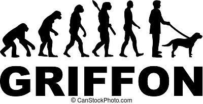 griffon, evolución, palabra