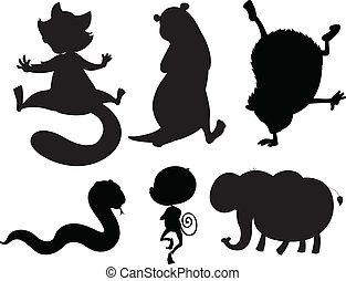 grigio, colori, animali, nero