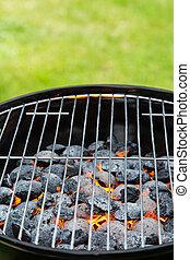 griglia, blistering, giardino, bricchette
