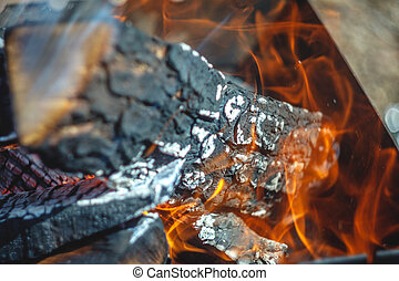 griglia, concetto, urente, fuoco, fuoco, logs., ecologia, foresta, close-up.