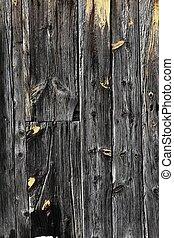 grijs, deur, houten textuur, achtergrond, oud