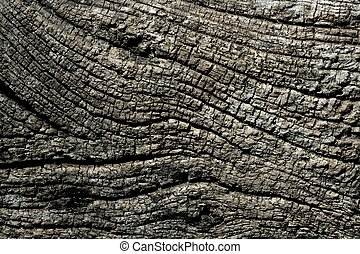 grijs, macro, textuur, hout, achtergrond, oud