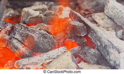 gril, charbon de bois, chaud, clair, flamme, fond, barbecue, vide, noir