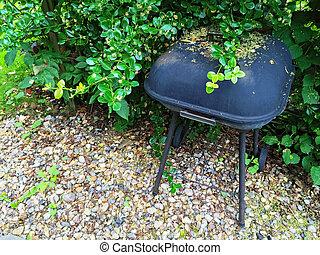 gril, charbon de bois, jardin, été