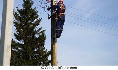grille, électricien, ligne., -, nouveau, installed, commutateurs, fonctionnement, récemment, puissance