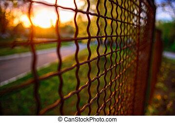 grille, métal, perspective, barrière