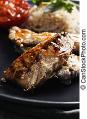 Grilled fish with rice closeup