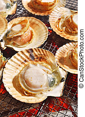 Grilled japanese scallop hotate