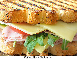 Grilled sandwich with cheese