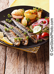 Grilled sardines with roasted potatoes and fresh salad closeup. vertical